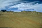 Os desertos têm a reputação de serem capazes de sustentar pouca vida. Comparando-se com regiões mais úmidas isto pode ser verdade, porém, examinando-se mais detalhadamente, os desertos frequentemente abrigam uma riqueza de vida que normalmente permanece escondida (especialmente durante o dia). </br></br> Palavra-chaves: deserto, clima, biodiversidade.