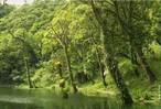 O processo de degradação das formações ciliares, além de desrespeitar a legislação, que torna obrigatória a preservação das mesmas, resulta em vários problemas ambientais. As matas ciliares funcionam como filtros, retendo defensivos agrícolas, poluentes e sedimentos que seriam transportados para os cursos d'água, afetando diretamente a quantidade e a qualidade da água e conseqüentemente a fauna aquática e a população humana. São importantes também como corredores ecológicos, ligando fragmentos florestais e, portanto, facilitando o deslocamento da fauna e o fluxo gênico entre as populações de espécies animais e vegetais. Em regiões com topografia acidentada, exercem a proteção do solo contra os processos erosivos. </br></br> Palavra-chaves: mata ciliar, degradação, ecossistema, meio ambiente, preservação
