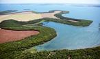 A foto é referênte a mata ciliar que contorna todo o lago de Itaipu e ajuda a preservar a boa qualidade da água. </br></br> Palavra-chaves: mata ciliar, foramção vegetal, mata de galeria, várzea.