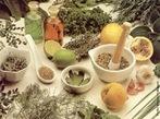A Fitoterapia é um recurso de prevenção e tratamento de doenças caracterizado pela utilização de plantas medicinais em suas diferentes formas farmacêuticas, sem a utilização de substâncias ativas isoladas, ainda que de origem vegetal. Plantas medicinais são aquelas que podem ser usadas no tratamento ou na prevenção de doenças. Toda planta medicinal tem no mínimo um princípio ativo, que é a substância responsável pelo efeito curativo. </br></br> Palavra-chaves: plantas medicinais, fitoterapia, fitocomplexo, plantas, ervas, saúde.