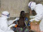 O ebola é um filovírus (o outro membro desta família é o vírus Marburg), com forma filamentosa, com 14 micrômetros de comprimento e 80 nanômetros de diâmetro. Há três estirpes: Ebola–Zaire (EBO–Z), Ebola–Sudão (EBO–S) com mortalidades de 83% e 54% respectivamente. A estirpe Ebola–Reston foi descoberta em 1989 em macacos Macaca fascicularis importados das Filipinas para os EUA tendo infectado alguns tratadores por via respiratória. O período de incubação do vírus ebola dura de 5 a 7 dias se a transmissão for parenteral e de 6 a 12 dias se a transmissão foi de pessoa a pessoa. O início dos sintomas é súbito com febre alta, calafrios, dor de cabeça, anorexia, náusea, dor abdominal, dor de garganta e prostração profunda. Em alguns casos, entre o quinto e o sétimo dia de doença, aparece exantema de tronco, anunciando manifestações hemorrágicas: conjuntivite hemorrágica, úlceras sangrentas em lábios e boca, sangramento gengival, hematemese (vômito com presença de sangue) e melena (hemorragia intestinal, em que as fezes apresentam sangue). Nas epidemias observadas, todos os casos com forma hemorrágica evoluíram para morte. Nos períodos epidêmicos e de surtos, a taxa de letalidade variou de 50 a 90%. Seu contágio pode ser por via respiratória, ou contato com fluidos corporais de uma pessoa infectada. </br></br> Palavras-chave: vírus, Ebola, epidemia, saúde.