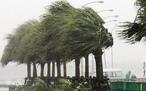 Eventos semelhantes, tufão, ciclone, furacão e tornado, são grandes massas de ar que se formam na atmosfera e giram em alta velocidade, produzindo ventos fortes e devastadores. Recebe o nome de tufão, quando ocorre na região noroeste do oceano Índico, como regiões da China, Coréia, Filipinas e Japão. O tufão só pode ocorrer sobre o oceano e quando a temperatura das águas for maior que 27oC e existir uma baixa pressão atmosférica sobre a região, formando-se em locais com latitude acima de 15o. <br /> <br /> Palavras-chave: tufão, meteorologia, massas de ar, pressão atmosférica, atmosfera.