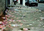 A poluição visual está associada às pichações nos muros de imóveis, anúncios publicitários veiculados por meio de placas, cartazes, outdoors luminosos, propaganda eleitoral, lixo espalhado pela cidade, dentre outros. Esse tipo de poluição consiste na agressão ambiental causada por anúncios, publicidades ou propagandas que infrinjam ou ameacem a estética urbana ou rural ou ocasionando perdas de qualidade de vida da coletividade. <br /><br /> Palavras-chave: poluição visual, campanha eleitoral, qualidade de vida, meio ambiente.