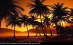 O pôr-do-sol ou pôr do Sol é o momento em que em que o Sol se oculta no horizonte na direção oeste que pode ser considerado como um processo inverso do nascer do sol que é quando o sol aparece no horizonte na direção leste. <br /><br /> Palavras-chave: pôr-do-sol, orientação, rotação.